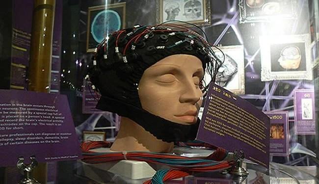 brain-waves-eeg