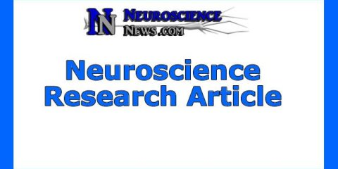 neuroscience-research-article5