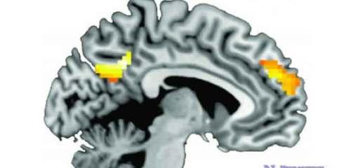 quit-smoking-brain
