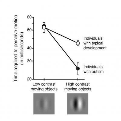 The image shows a graph comparing the perception times between individuals with and without autism.