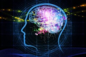 This image shows a digital brain.