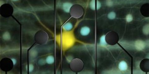 This image shows a representation of the electrodes over neurons.