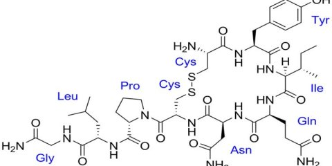 This image shows the chemical structure of oxytocin with labeled amino acids.