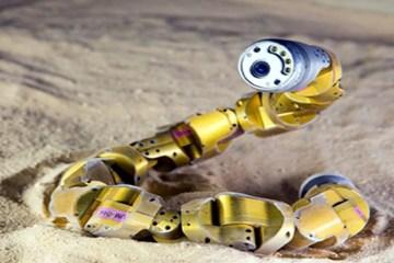 Image shows the snakebot.