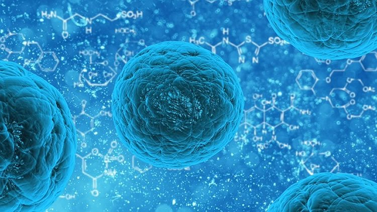 This image is a graphic art representation of stem cells.