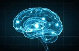 Image shows a blue brain.