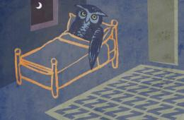 Image shows an owl laying in a bed.