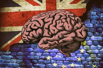 Image shows the union flag, the EU flag and a brain.