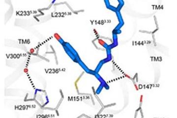 Image shows synthesized analgesic compound PZM 21.