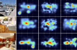 Image shows photos and heat maps.