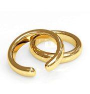 Nevada Divorce Forms - Broken wedding rings