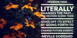 What Does Revision Actually Do When Feeling It Real?
