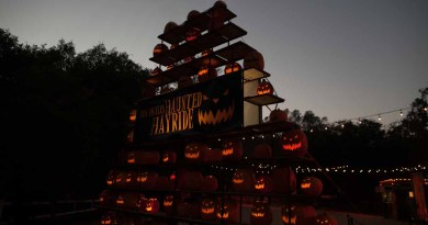 Los Angeles Haunted Hayride 2014 jack o lanterns 1 original
