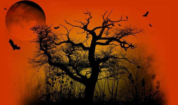 Halloween-OrangeSky-WithBats