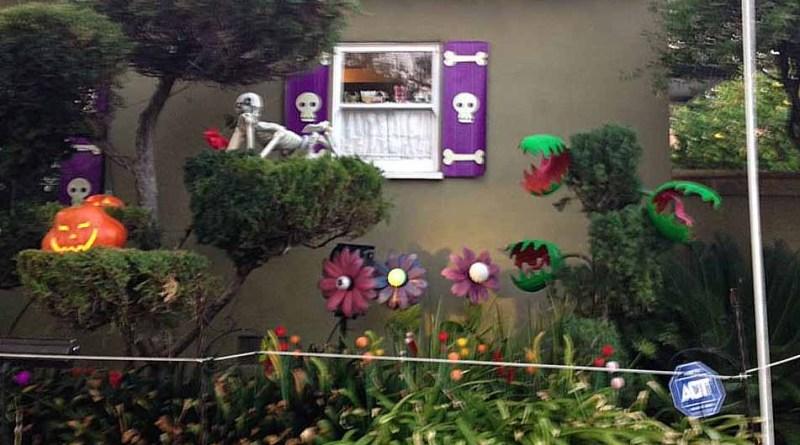 Boney Island 2015 Enchanted Garden Medium Shot