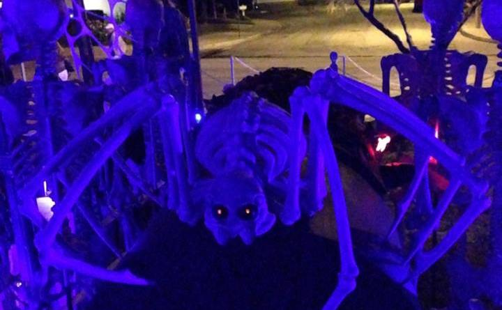 coffinwood-cemetery-2016-skeleton-spider