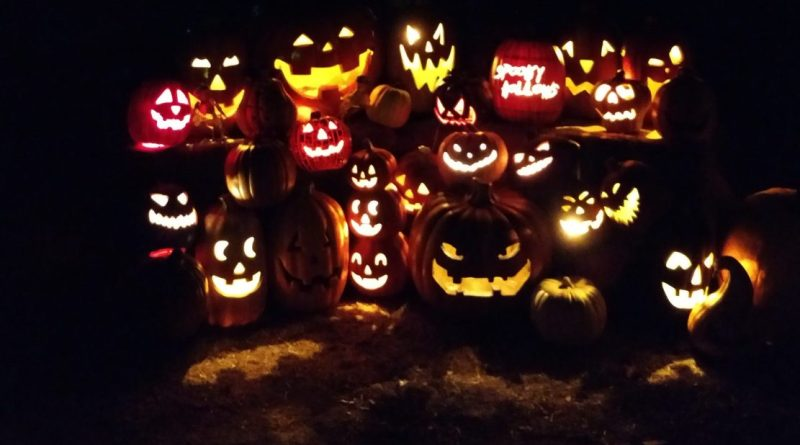 spooky-hollows-2016-jack-olanterns