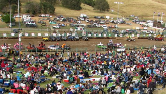 Another Successful Fair & Frog Jump Jubilee!!  Livestock Auction Brings In Over $500,000