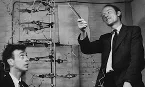watson_and_crick_dna_structure_original