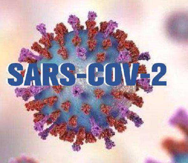 新型冠狀病毒的疫情遠勝SARS。 圖片來源:新浪網