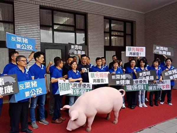 國民黨要推反萊豬公投。 圖片來源:中時電子報