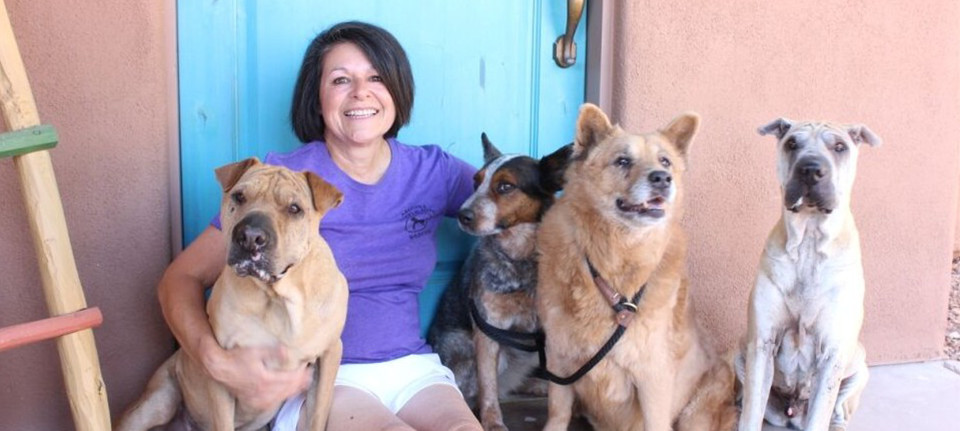 Tucson Dog Trainer Susan Del Signore – New Dogs Old Trix
