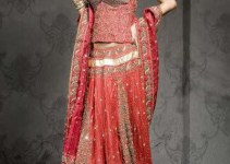 Lehenga Dress Collection 2012 For Bridies