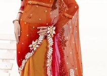 Flamingo Party wear Sarees Collection 2013 001