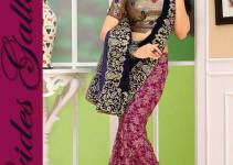 Brides Galleria Latest Stylish Party Wear Indian Sarees 2014 001