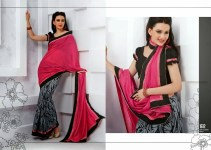 Latest Indian Silk Saree Collection with Blouses 2014 For Women (1)