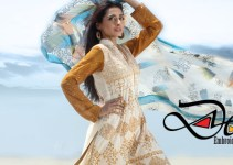 Fashionable Stitched Lawn Set 2014 For Eid Event By Dicha (6)