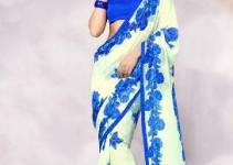 Indian Basic Multicolored Saree Stylish 2014-15 (3)