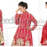 Needle Impressions Eid Clothes 2014 For Females (4)