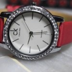 Beautiful Watches Collection 2014 5