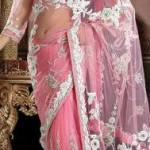 Utsav Fashion  Attractive Saree with Blouse Concepts 2014 For Marriage (3)