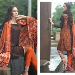 Firdous Pashmina Collection 2014-15 8