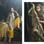 Firdous Pashmina Collection 2014-15 9