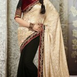 Lovely Evening Wear Saree Collection 2014-15 7