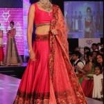Bollywood Actress Splendid Lehenga Choli 2016 For Wedding (3)