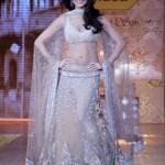 Bollywood Actress Splendid Lehenga Choli 2016 For Wedding (4)
