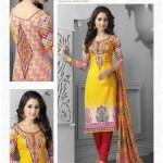 Punjabi Churidar Salwar Kameez Collection (1)
