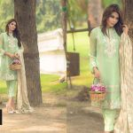 So kamal Lawn for Fall winter