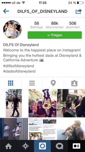 OMG! Lauter Dilfs im Disneyland! (Screenshot)