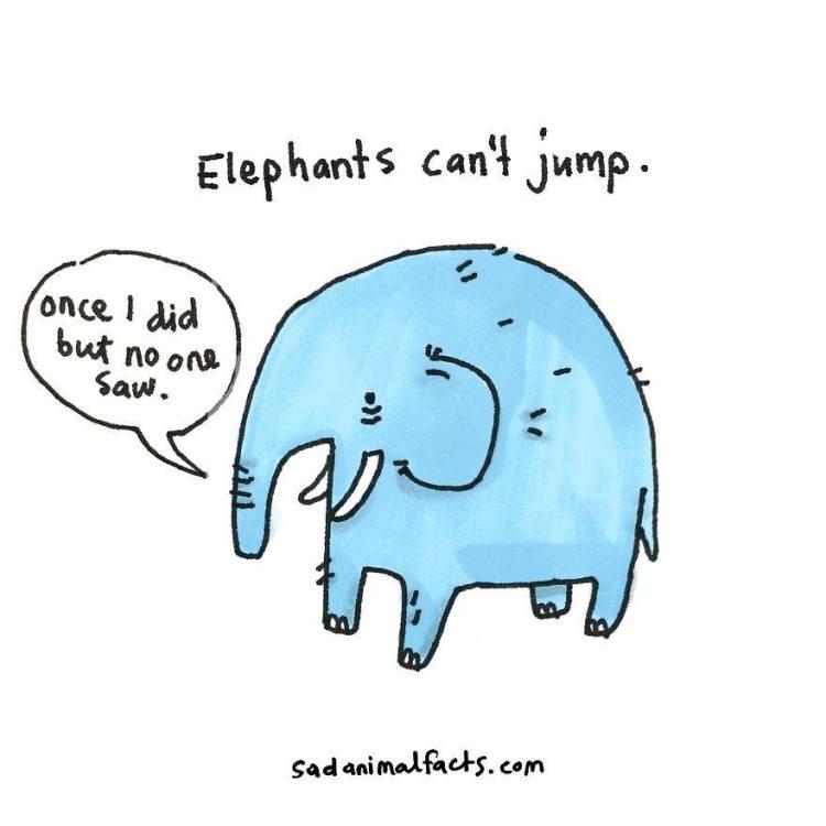Sad-Animal-Facts-Elephants
