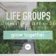 NLC_LifeGroupFall 2016