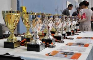 Newport Beach Table Tennis - League Finalists