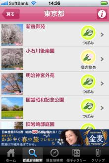 お花見ナビ~みんなでつくる桜百景~ Yahoo! JAPAN 開花情報