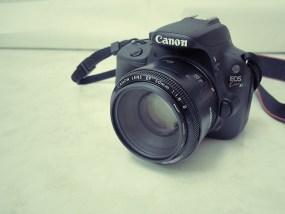 綺麗なボケで写真が別物に!コスパ最高の単焦点レンズEF50mm F1.8 II
