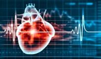 heart schematics