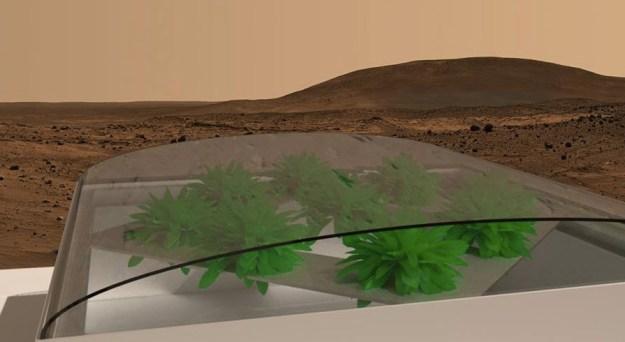 Image Credit: Mars One